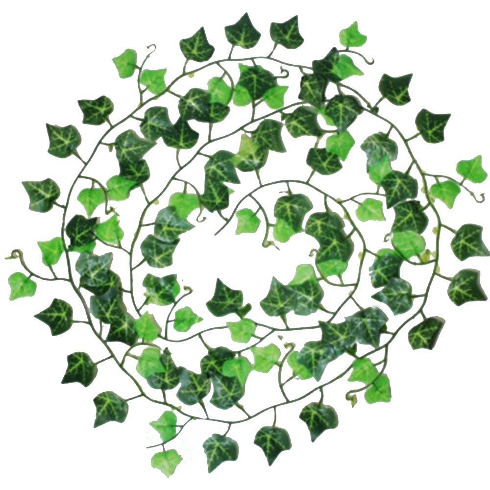 Ivy clipart big leaf Plant Leaf Home Big Decor