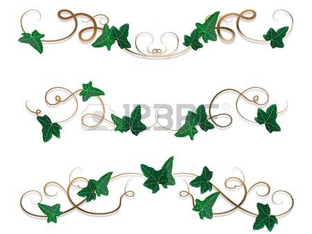Ivy clipart decorative Leaves and Borders image Clipart