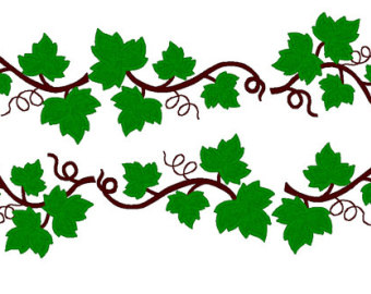Ivy clipart grape leaves 4x4 and applique Etsy Leaves
