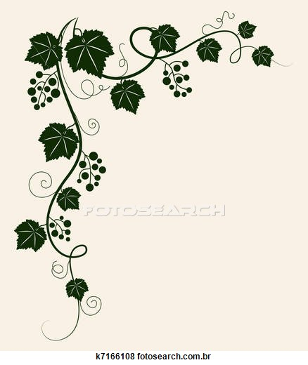Ivy clipart grape leaves Stock border grapevine of photos