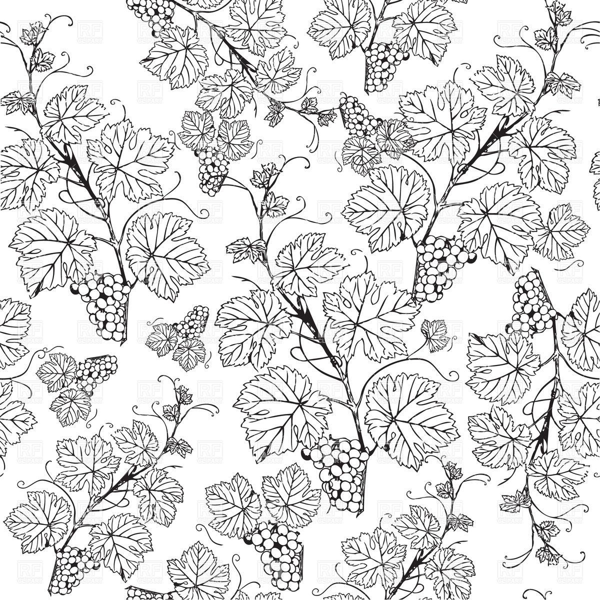 Ivy clipart grape leaves Vine Grape Patterns sketch Grape