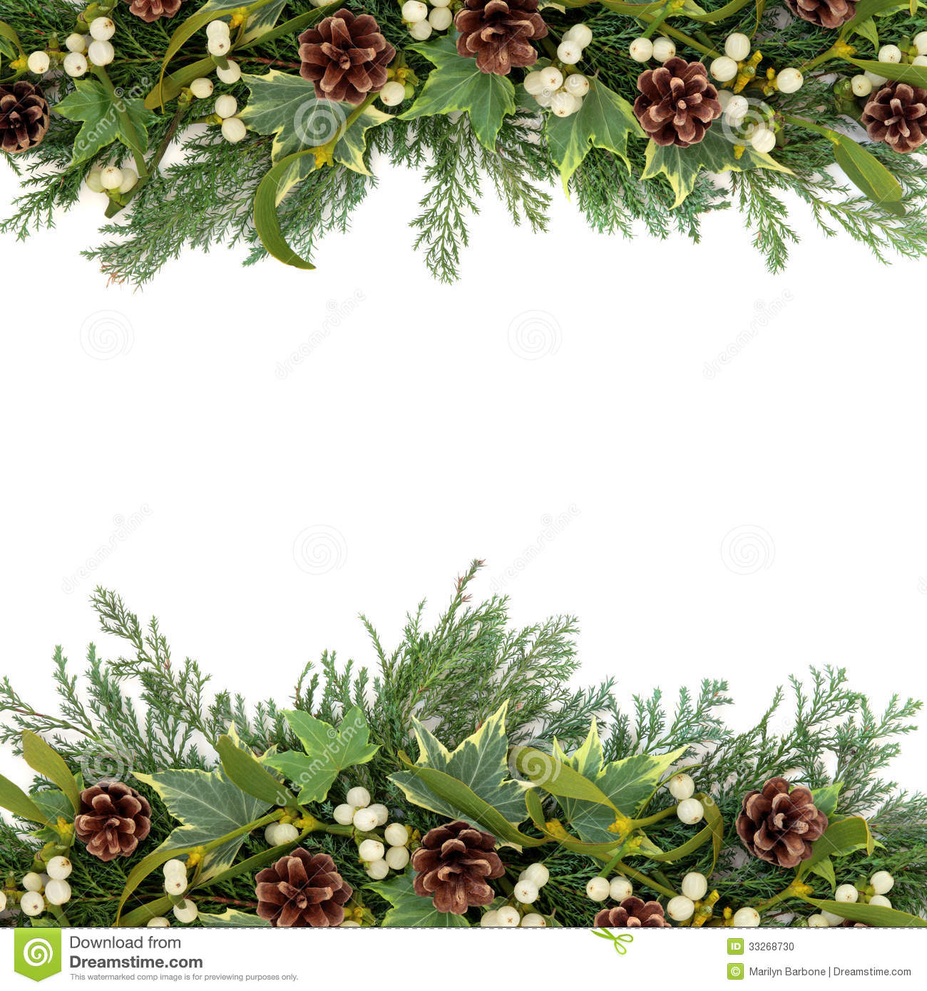 Pine Cone clipart border Holiday ivy (53+) Ivy Clipart