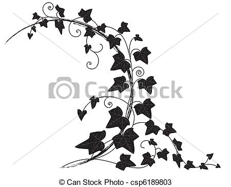 Ivy clipart line  with ivy vector Vectors