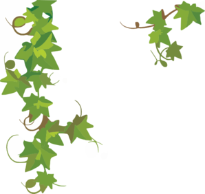 Ivy clipart simple Ivy Clipart cliparts Scroll Scroll