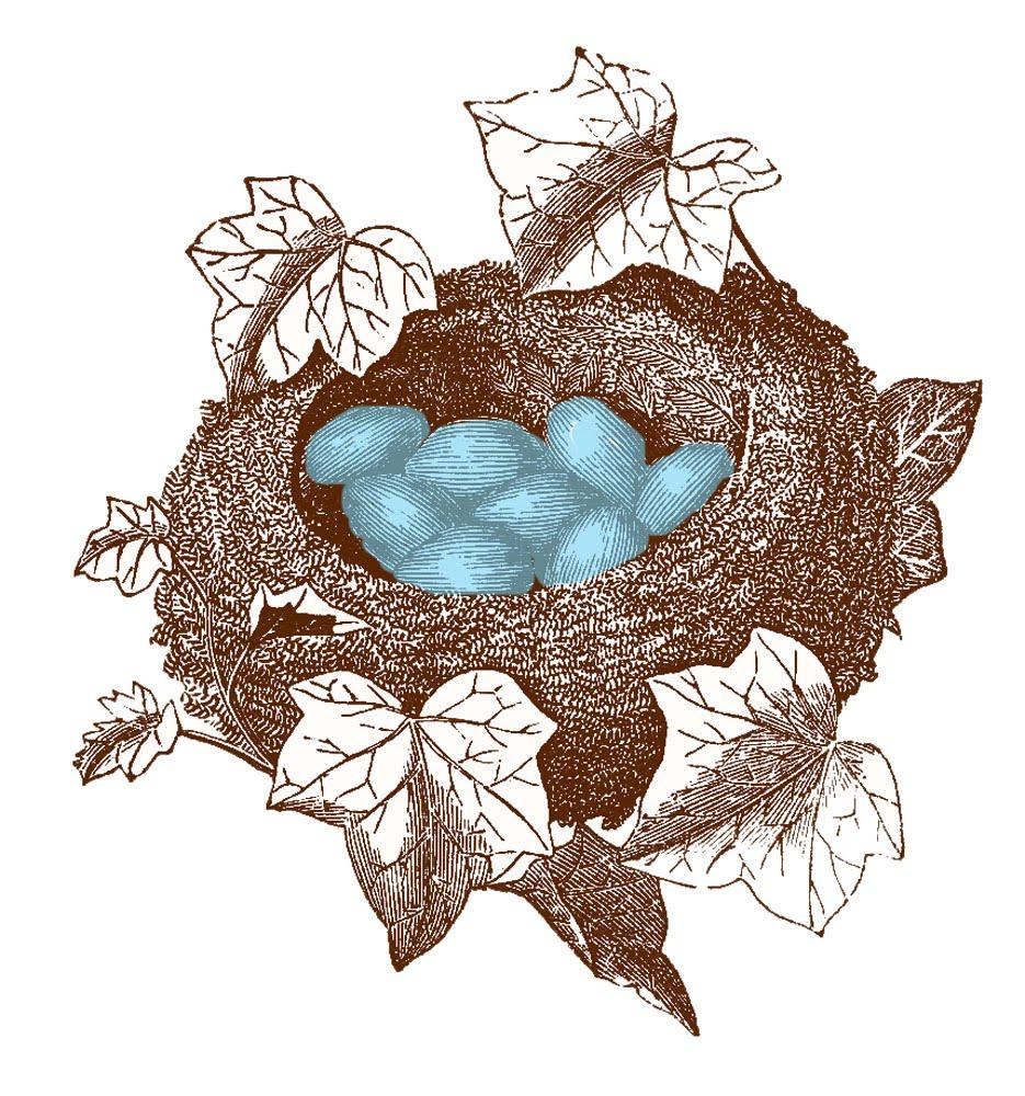 Ivy clipart vintage Fairy Vintage & Gorgeous Nest