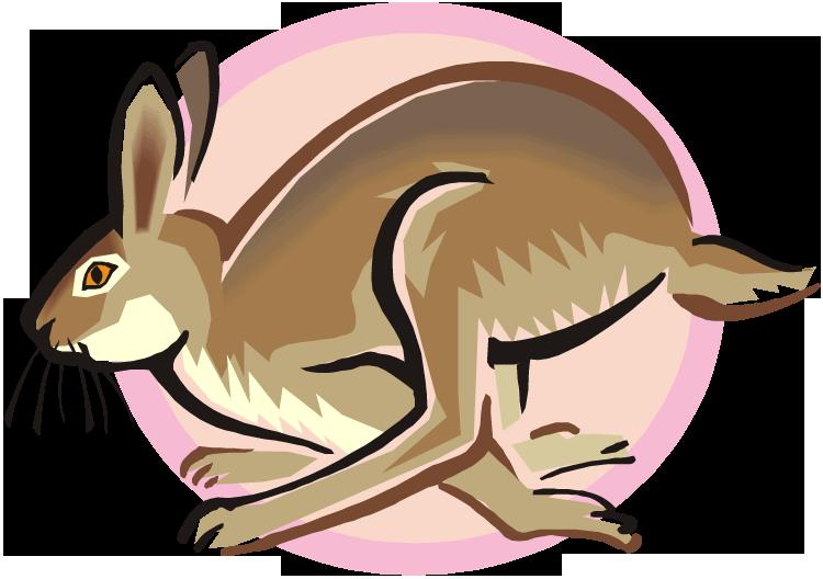 Jack Rabbit clipart Clipart Free Clipart Rabbit Rabbit