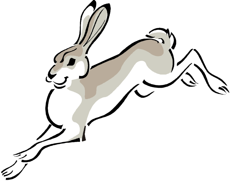 Jack Rabbit clipart Free Rabbit Rabbit Clipart