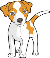 Jack Russell Terrier clipart Clipart Search jack Results