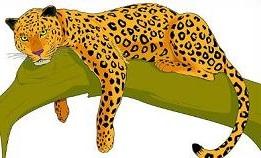 Jaguar clipart Jaguar Free Clipart Jaguar