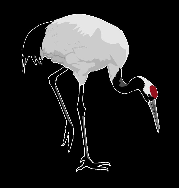 Bird clipart crane Clip Clip Crane Free Panda