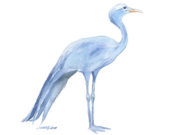 Brds clipart blue crane 11x14 Print Bird painting South