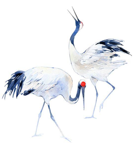 Japanese Crane clipart On images Japanese Pinterest best