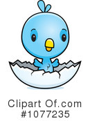 Blue Jay clipart baby blue Illustrations Free Clipart Jay Clipart