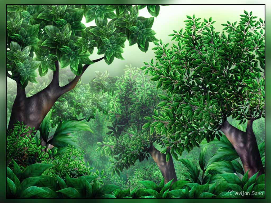 Jungle clipart Clip 1 Clipartix Jungle Jungle