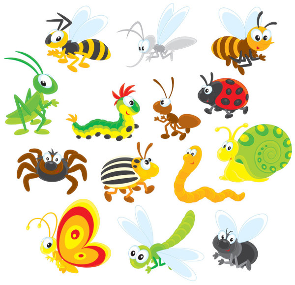 Bug clipart jungle Set Insects 13 set Cartoon