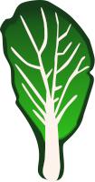 Kale clipart vegatable Kale Clip Download Art Kale