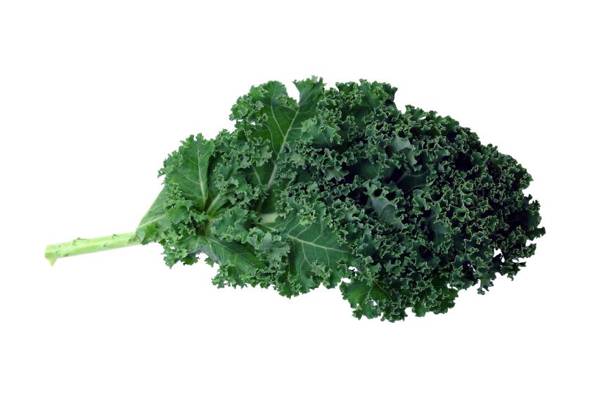 Kale clipart vegatable Iceburg Page Title Lettuce