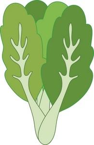 Kale clipart vegatable A the Kale Kale Clipart