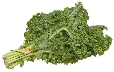 Kale clipart Kale Small Art Download Bundle