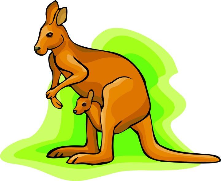 Kangaroo clipart Panda Clipart Clipart Baby Kangaroo