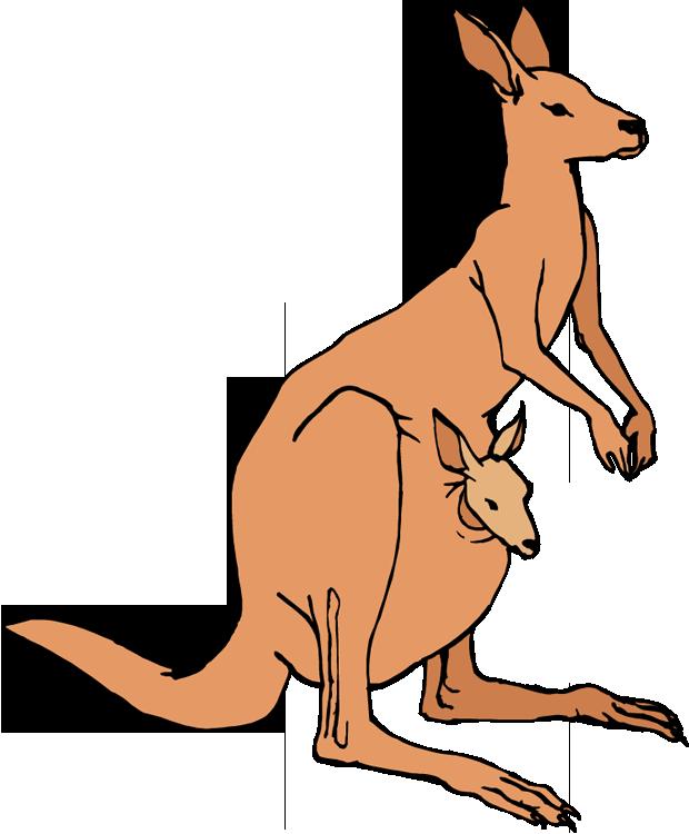 Kangaroo clipart Clipart Art Images Kangaroo Clip