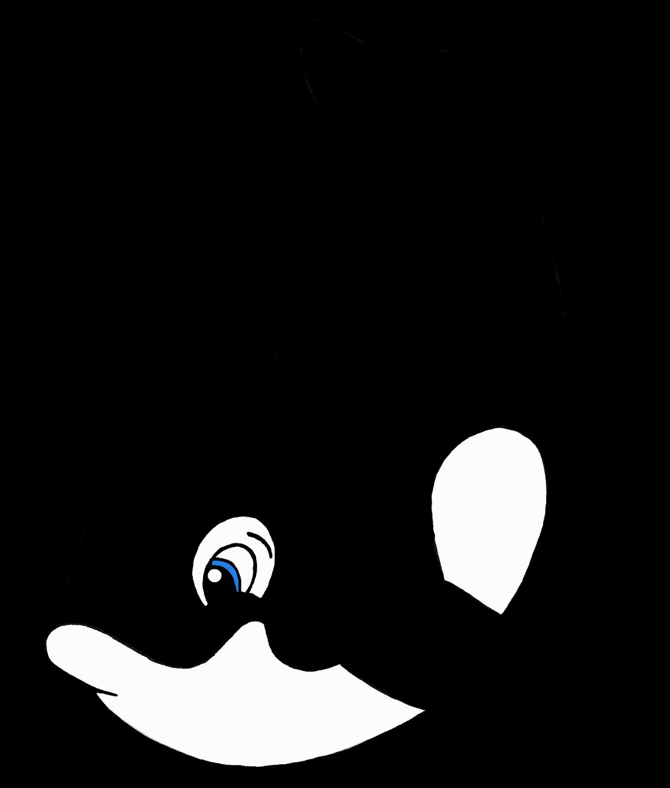 Killer Whale clipart On Cartoon Cartoon Clipart Download