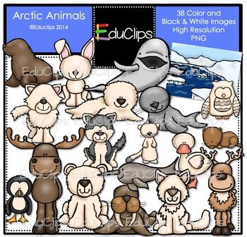 Arctic Hare clipart arctic seal Bundle Animals Art Clip Clip