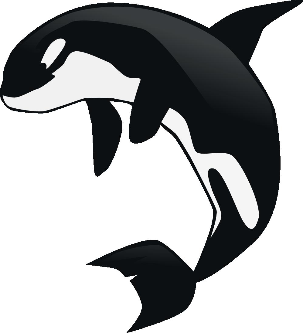 Orca clipart transparent Download of Orca Clip Clip