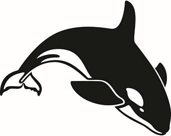 Orca clipart cute baby Animal Fish Digital Vector EPS
