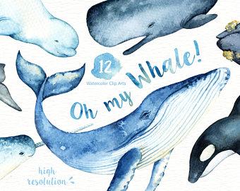 Blue Whale clipart marine animal Clip clipart My Arts art