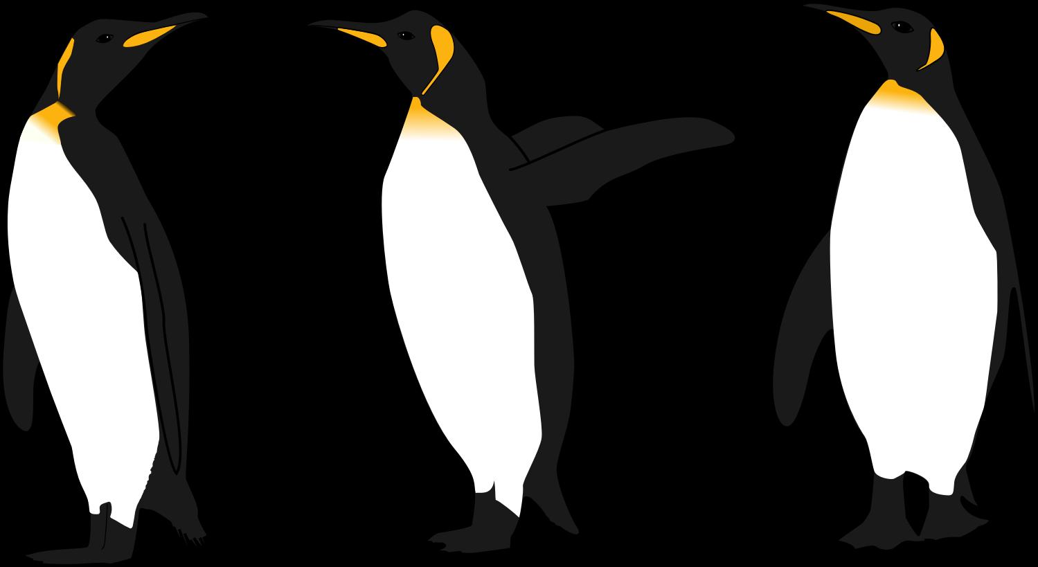 King Penguin clipart Clipart Penguin photo#2 King Clipart
