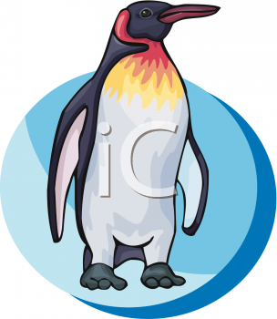 King Penguin clipart Clipart a King King More