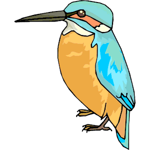 Kingfisher clipart Popular Cartoon Free Clip