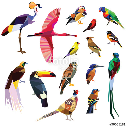 Bird Of Paradise clipart colorful bird Set colorful birds background poly