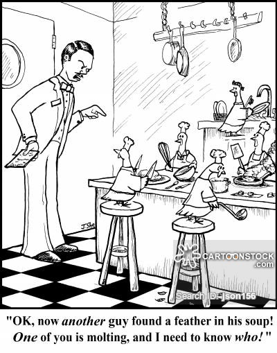 Kitchen clipart unhygienic Pictures Cartoons funny cartoon Comics
