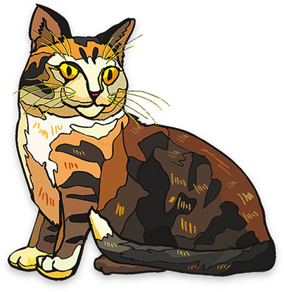 Cat clipart brown Cat Animations Animals Brown sitting