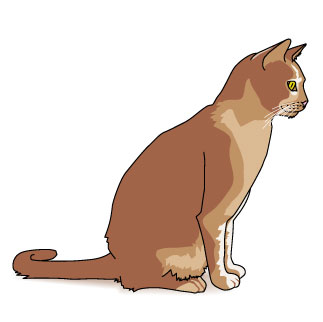 Cat clipart brown Free Download Clipart Free Art