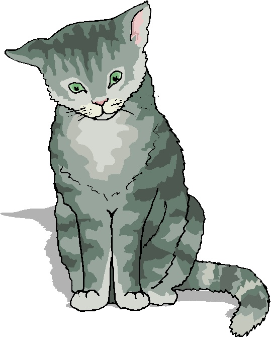 KITTENS clipart gray cat Cat Microsoft Wimsey Zone Cliparts