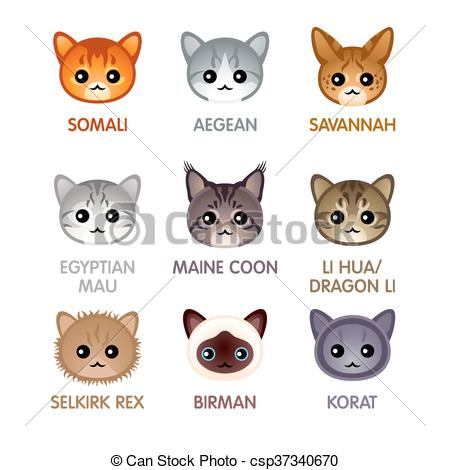 KITTENS clipart kawaii cat Cat set csp37340670 Vectors breed