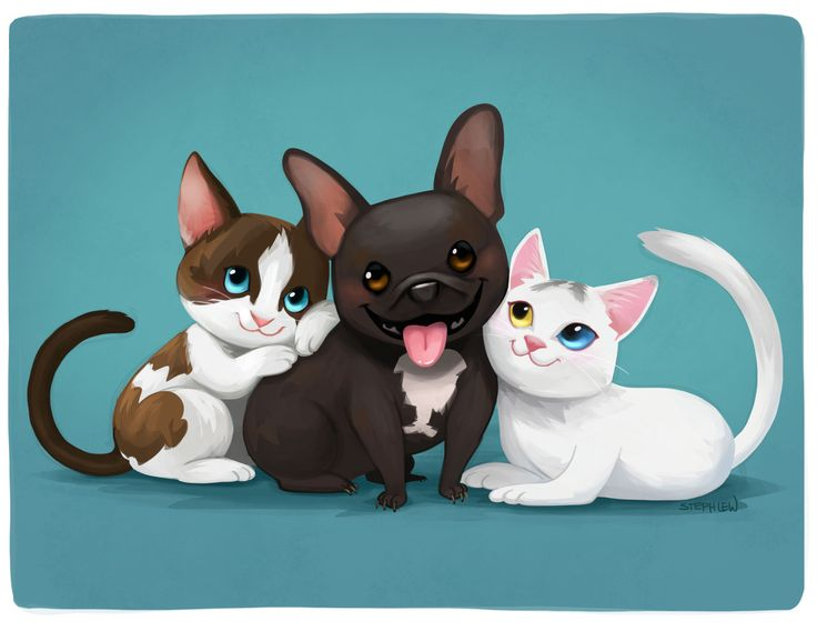 KITTENS clipart pet animal Images Recent 120 pals her