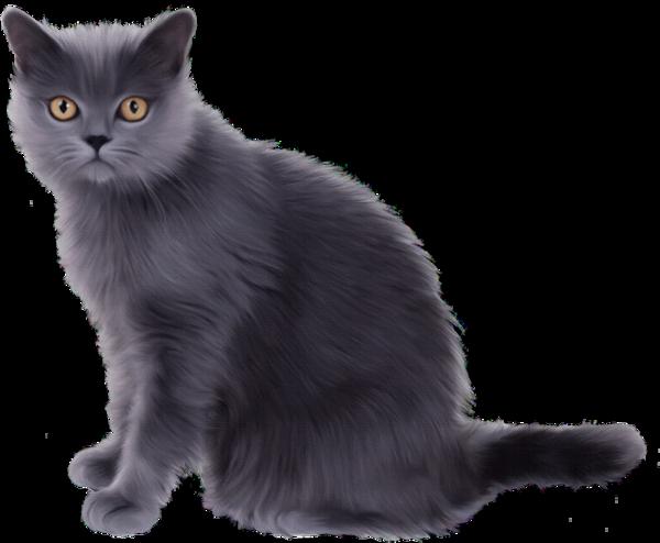 KITTENS clipart transparent background Clip Kitten Art Kitten spalife