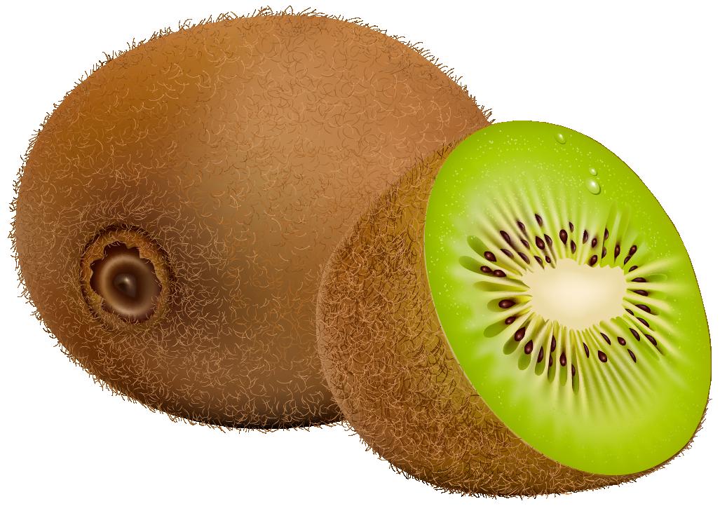 Tree clipart kiwi #5