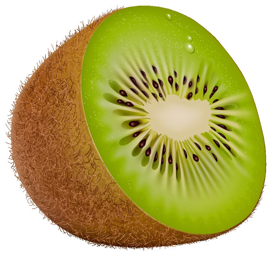 Tree clipart kiwi #7