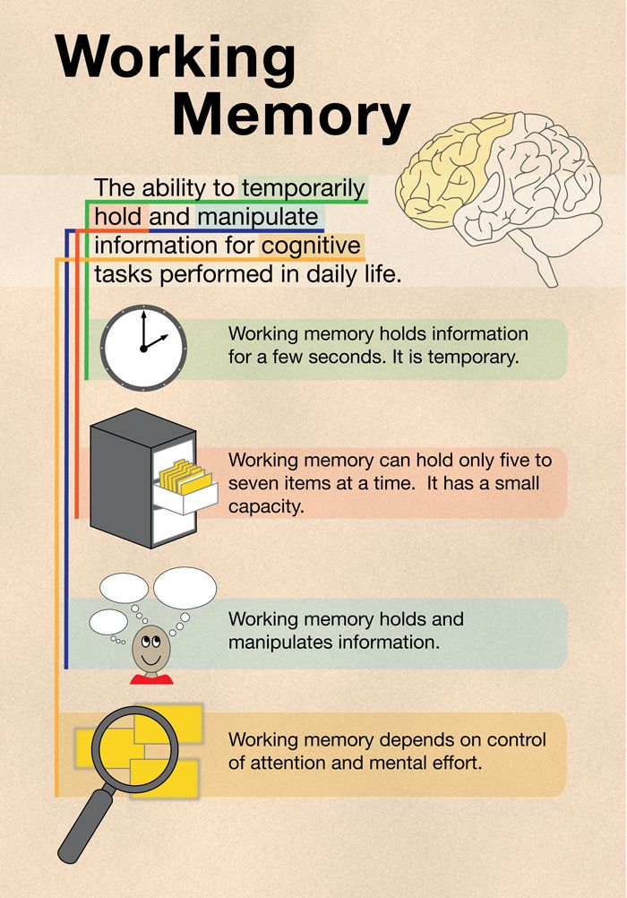 Mindteaser clipart working memory On 25+ in Pinterest ideas