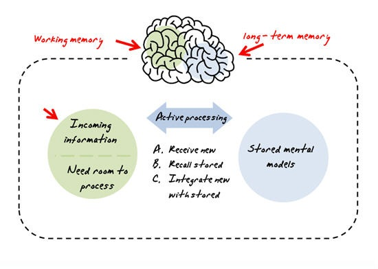 Brains clipart long term memory How Remember Learning To Get