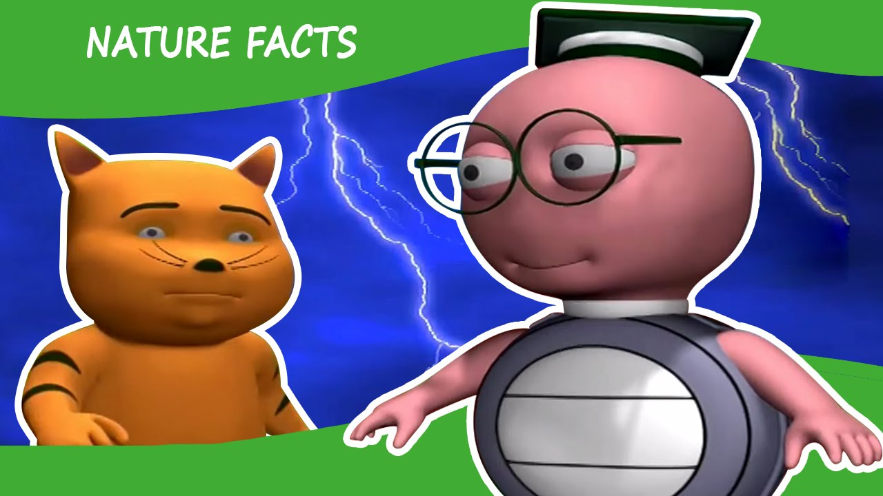 Knowledge clipart interesting fact About General Kids About Interesting