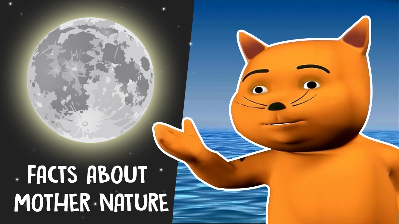 Knowledge clipart interesting fact Facts Nature Me In Interesting