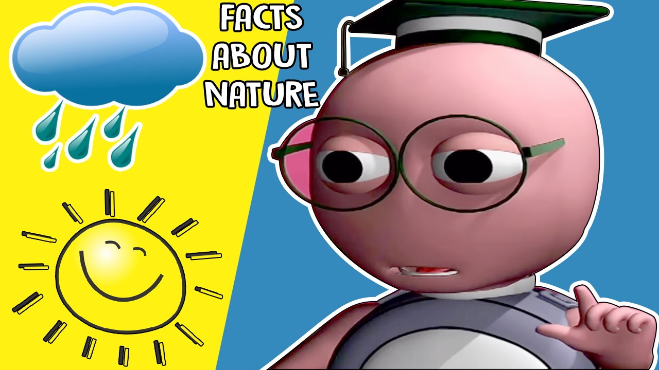 Knowledge clipart interesting fact Nature Learning KidsVideoShow About Interesting