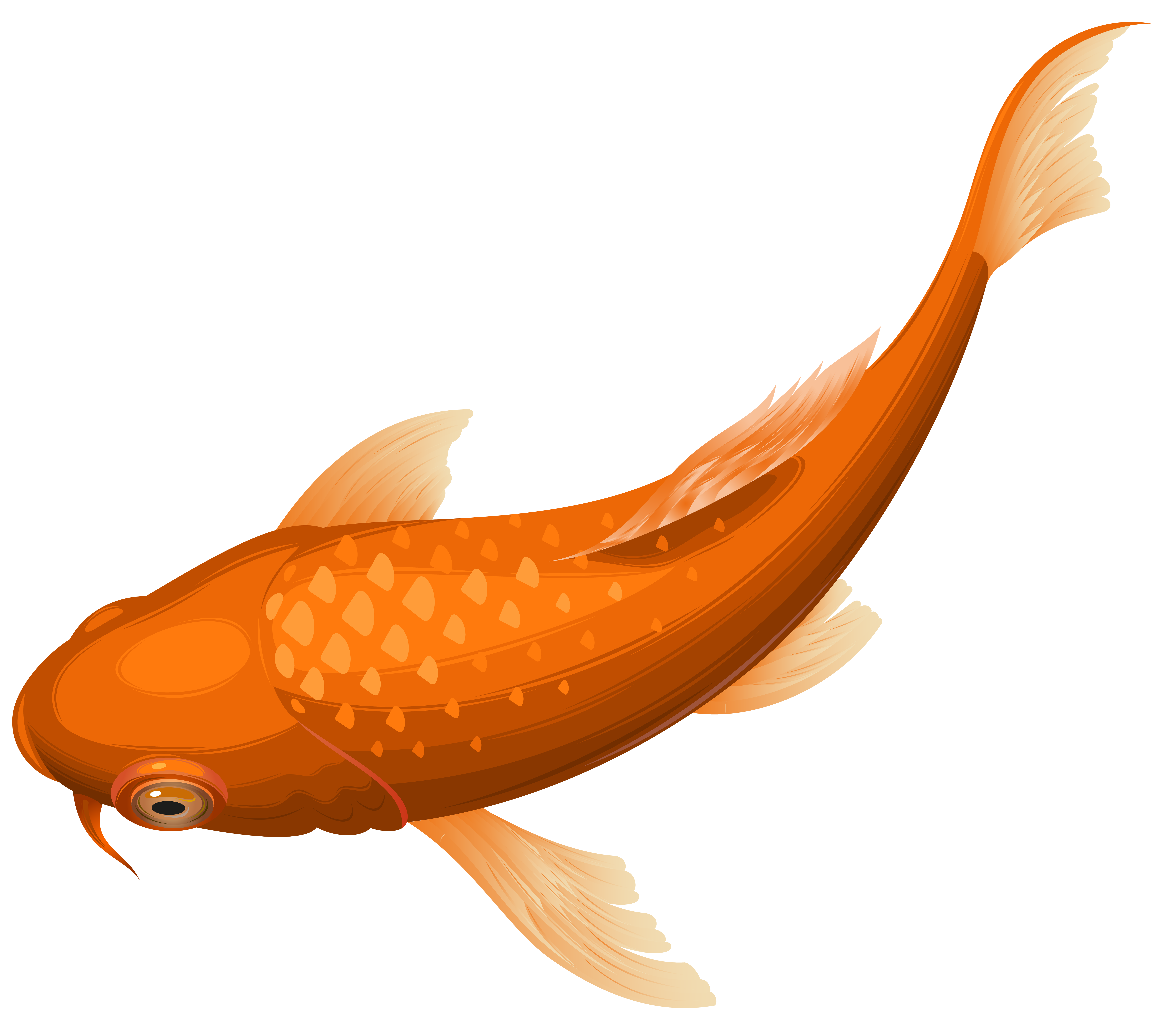 Koi Fish clipart Others Gold Art Cliparts Clipart