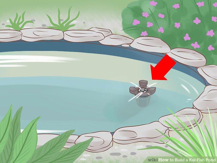 Koi clipart A Fish Pond Image a